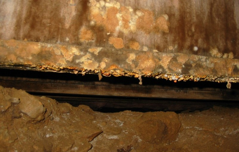 decayed-plywood-web-joist-in-crawlspace